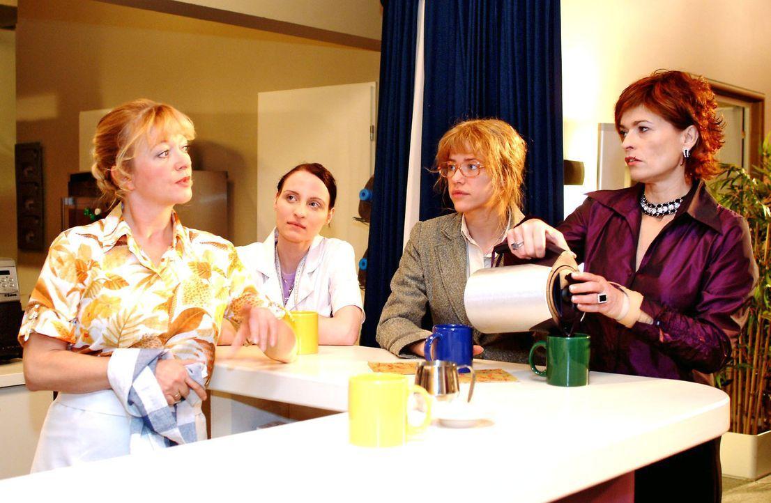 Lisa (Alexandra Neldel, 2.v.r.) verschweigt Helga (Ulrike Mai, l.), Anna (Claudia Falco, 2.v.l.) und Sophie (Gabrielle Scharnitzky, r.) gegenüber de... - Bildquelle: Monika Schürle Sat.1