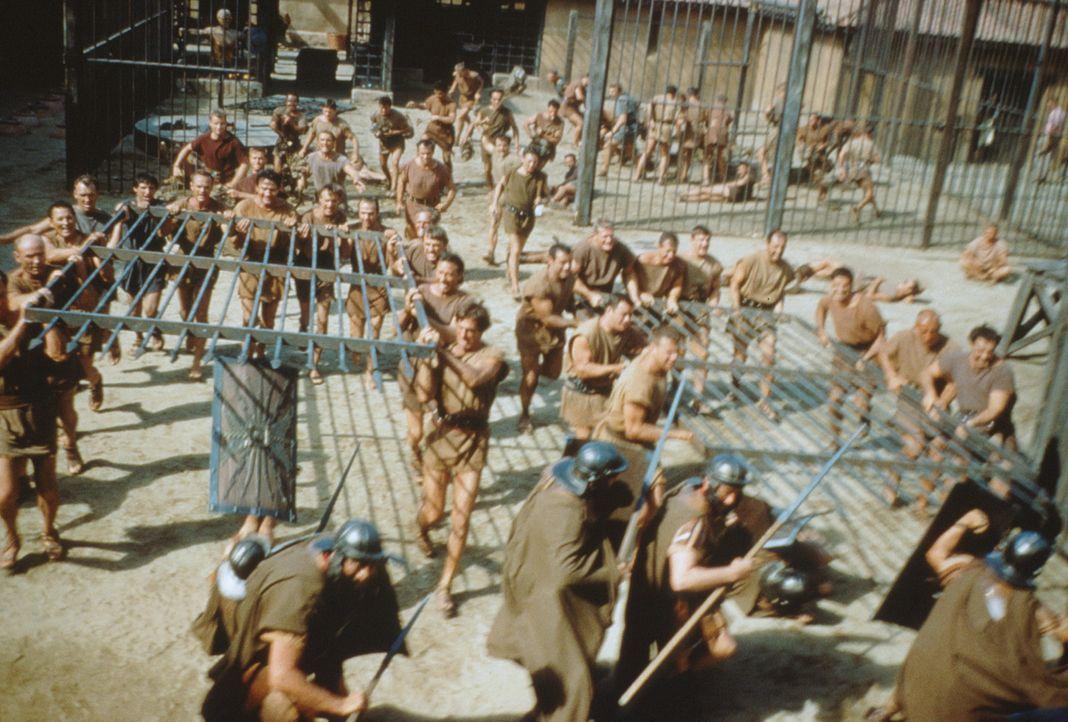Rom im Jahre 74 vor Christus: Tyrannei und Sklaverei beherrschen das Land ... - Bildquelle: 1960 Universal Pictures Co., Inc.