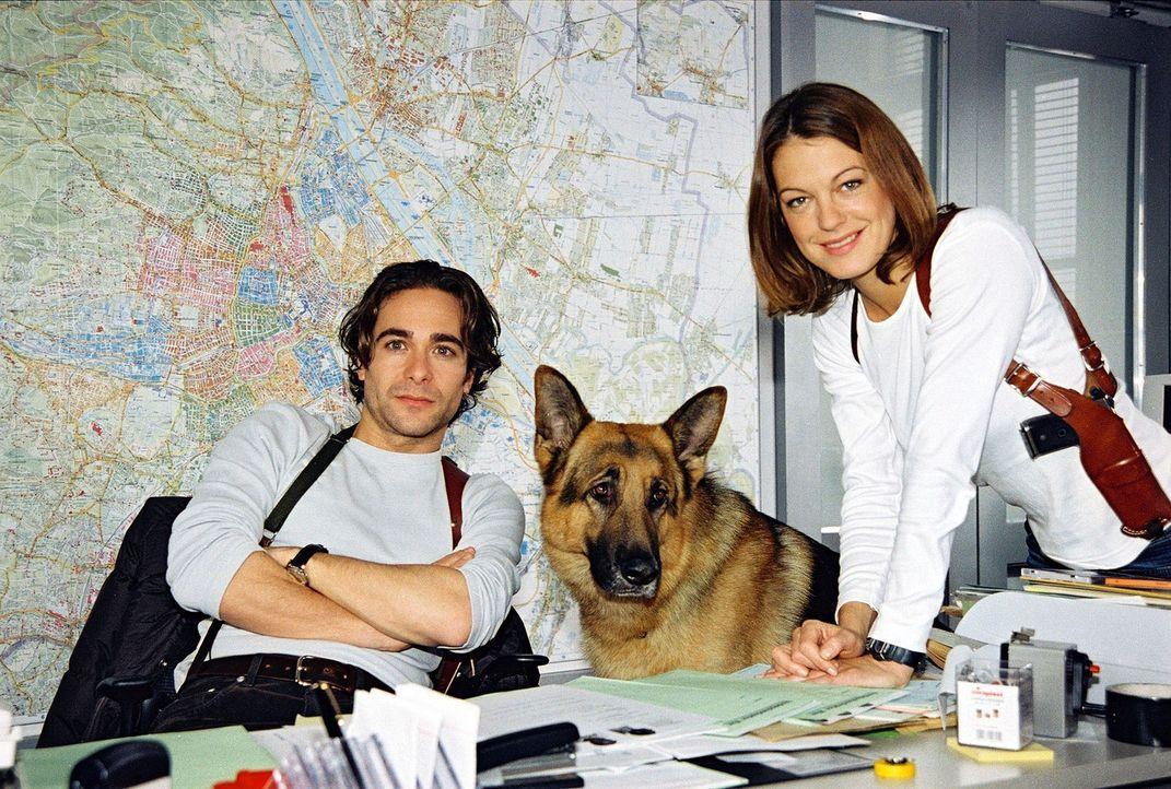 Dieses Team löst jeden Fall: V.l.n.r.: Marc (Alexander Pschill), Rex und Niki (Elke Winkens). - Bildquelle: Ali Schafler Sat.1
