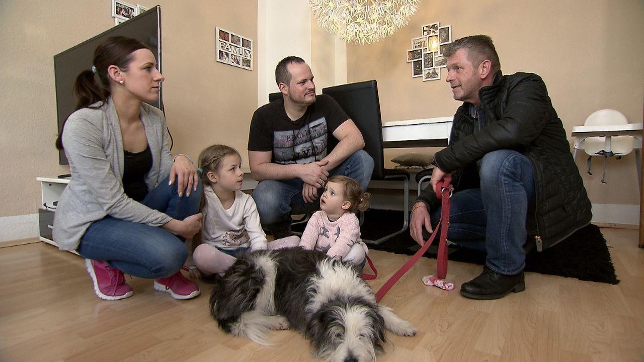 Hundetrainer Dirk Lenzen (r.) besucht mit Familie Zieglerskis drei Hundezüchter, um den geeigneten Hund zu finden ... - Bildquelle: SAT.1