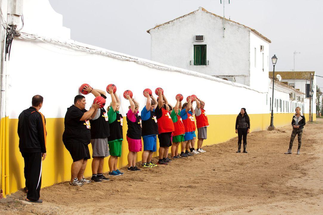Wer kann am längsten den Ball in die Höhe halten? Christine Theiss (r.), Silke (2.v.r.), Ramin (l.) überwachen die Challenge ... - Bildquelle: Enrique Cano SAT.1