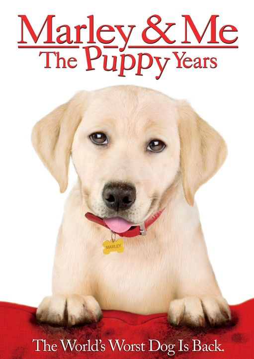 """Marley and me 2"" - Plakatmotiv - Bildquelle: 2011 Twentieth Century Fox Film Corporation. All rights reserved."