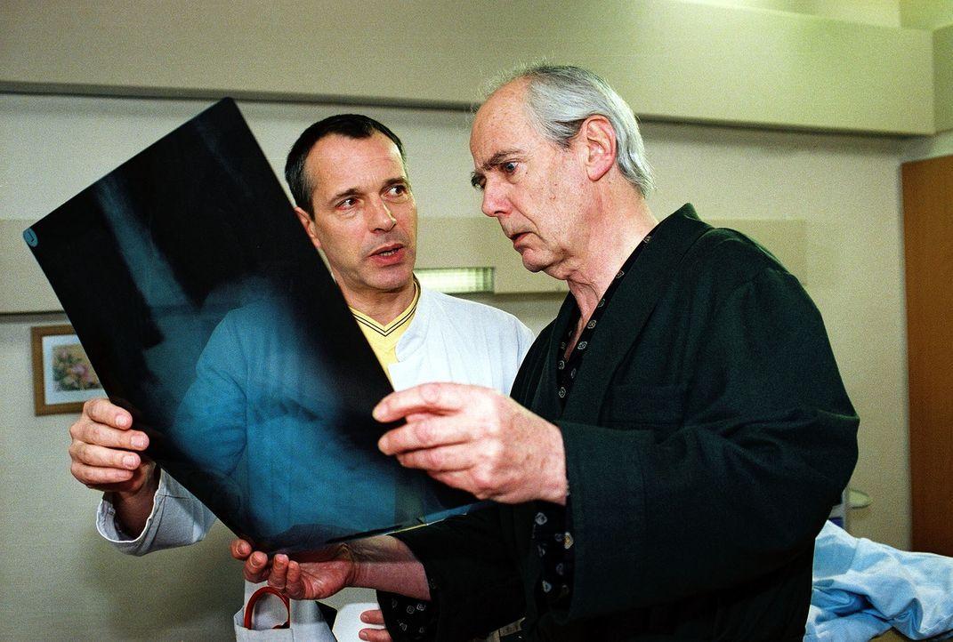 Dr. Stein (Christoph Schobesberger, l.) hat festgestellt, dass Prof. Schroth (Joachim Bliese, r.) bei der Darm-OP von Frau van Straaten gepfuscht ha... - Bildquelle: Monika Schürle Sat.1