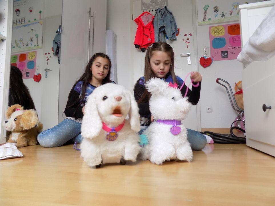 Familie Yapar aus Köln hat sich dazu entschlossen, einen Welpen bei sich aufzunehmen. Für ihre kleinen Töchter geht ein sehnlicher Wunsch in Erfüllu... - Bildquelle: SAT.1