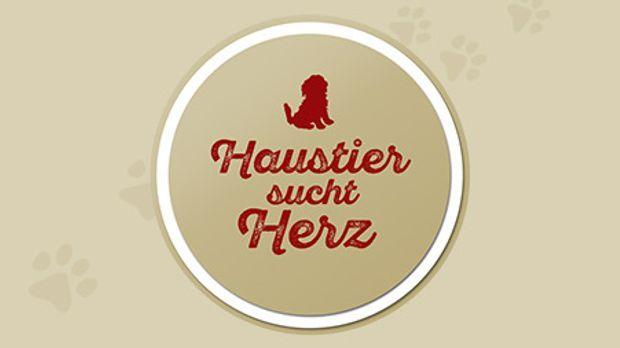 Haustier Sucht Herz Sat1 Gold