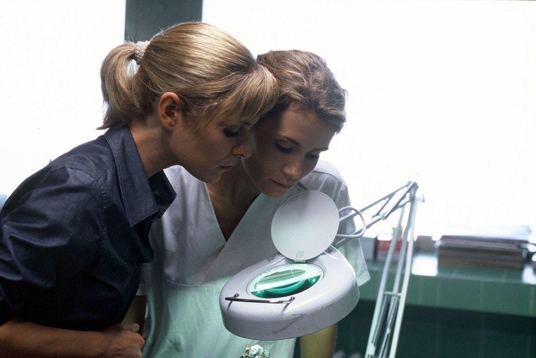 Susanna Beckert (Lisa Martinek, l.) und Gerit Raische (Anja Kling, r.) suchen neue Spuren im Labor. - Bildquelle: Wolfgang Wehner Sat.1