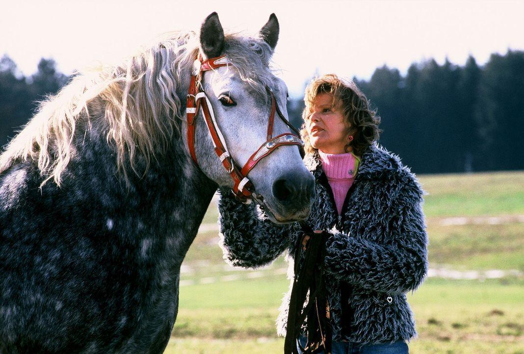 Nach 17 Jahren trifft Benno die Dompteurin Madeleine (Ulrike Kriener) wieder, mit der er damals eine leidenschaftliche Affäre hatte. - Bildquelle: Magdalena Mate Sat.1