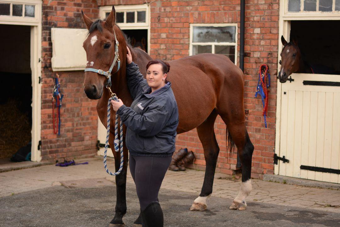 Ein großes Herz für Tiere hat der britische Tierarzt Julian Norton, der uns ... - Bildquelle: Daisybeck Studios