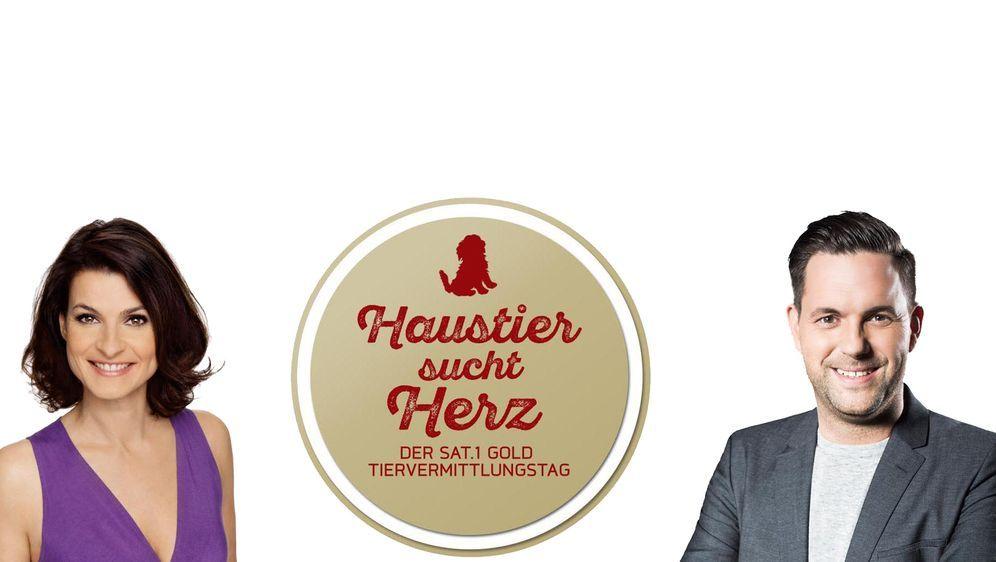 Haustier sucht Herz - Der SAT.1 Gold Tiervermittlungstag - Bildquelle: SAT.1 Gold