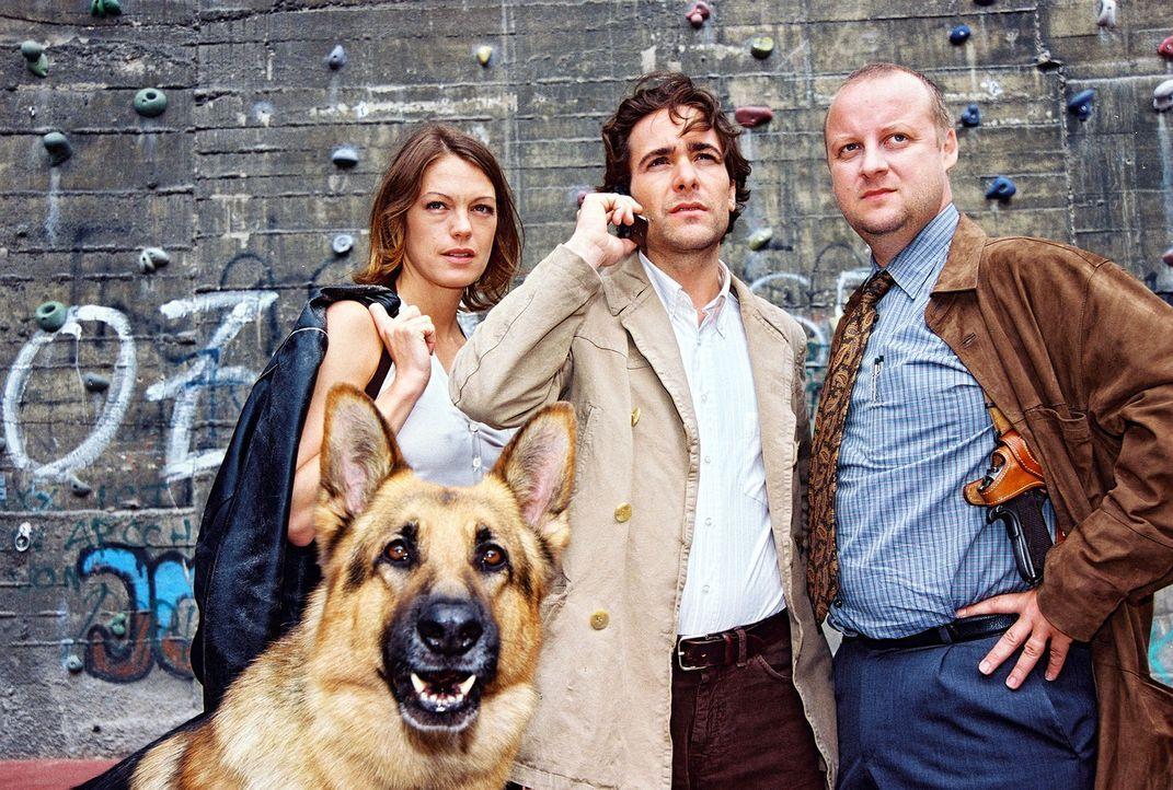 V.l.n.r.: Niki (Elke Winkens), Marc (Alexander Pschill) und Kunz (Martin Weinek) stoßen bei ihren Ermittlungen auf eine Gruppe von Freeclimbern, der... - Bildquelle: Ali Schafler Sat.1