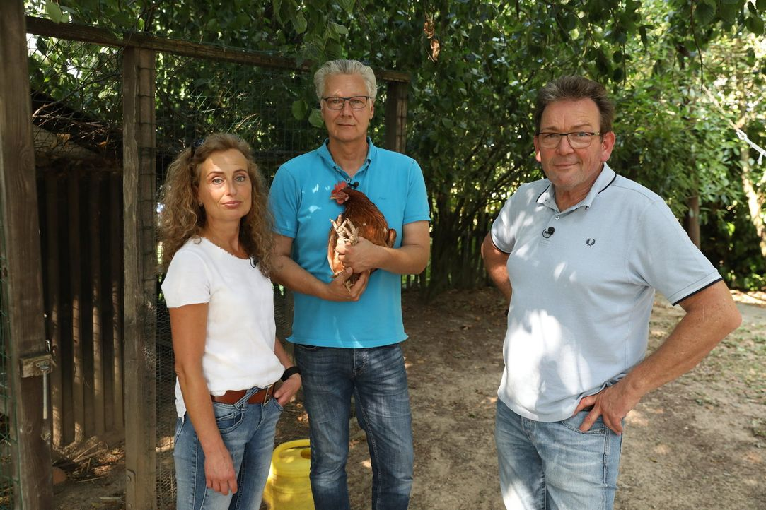 (v.l.n.r.) Dr. Kamlage; Klaus; Dr. Herbert Dreesen - Bildquelle: SAT.1 GOLD