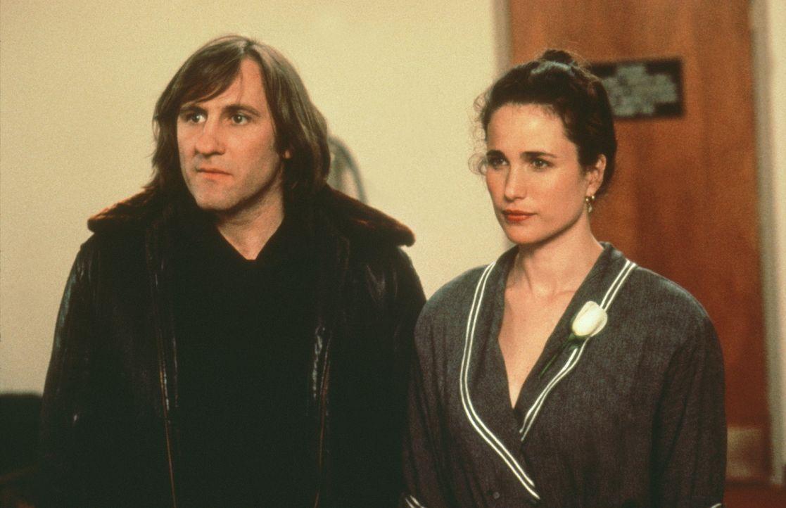 Um eine unbefristete Aufenthaltsgenehmigung zu erhalten, geht George (Gérard Depardieu, l.) eine arrangierte Heirat mit der aus wohlhabenden Verhält... - Bildquelle: Warner Bros.