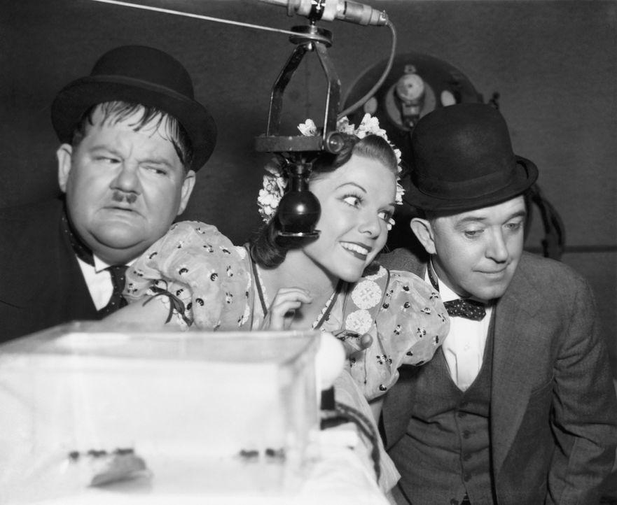 (v.l.n.r.) Oliver Hardy; Anna Albert (Della Lind); Stan Laurel - Bildquelle: Beta Film