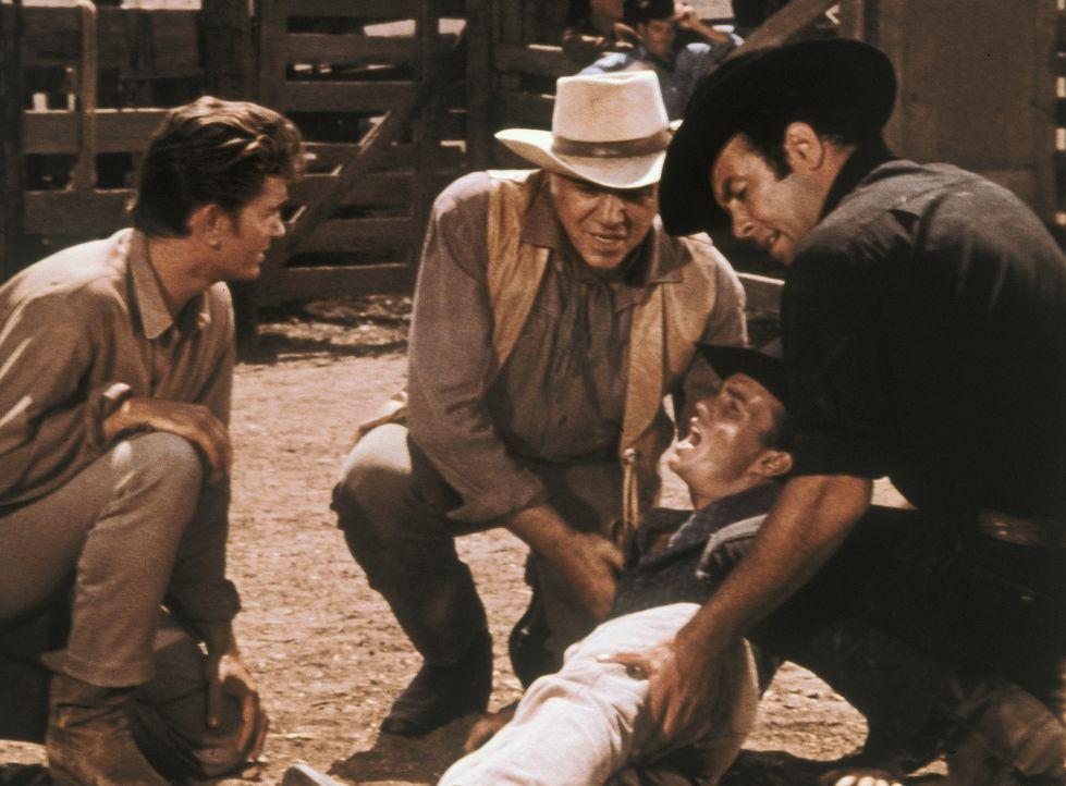 Auf der Ponderosa werden für einen Viehtrail Pferde zugeritten. Dabei verletzt sich der Cowboy Johnny Lightly (Ben Cooper, liegend) schwer. Dr. Kay... - Bildquelle: Paramount Pictures
