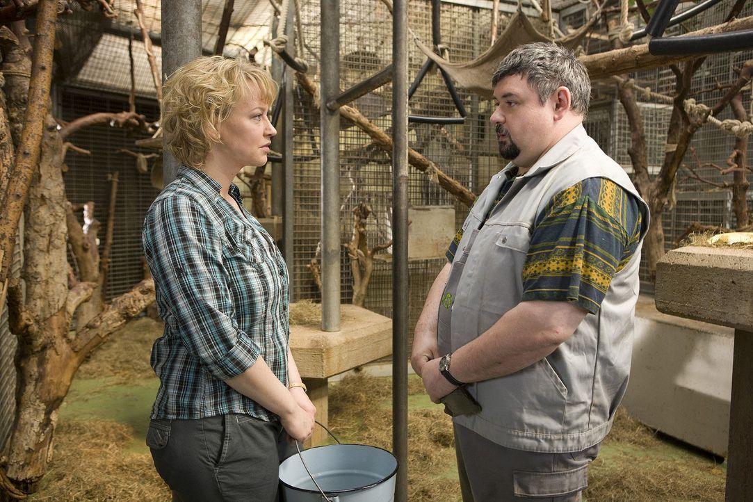 Peter (Thomas Gimbel, r.) beichtet Sonja (Floriane Daniel, l.), dass er an den Katastrophen im Zoo schuld ist und wer ihn dazu angestiftet hat. Doch... - Bildquelle: Thomas Kost Sat.1