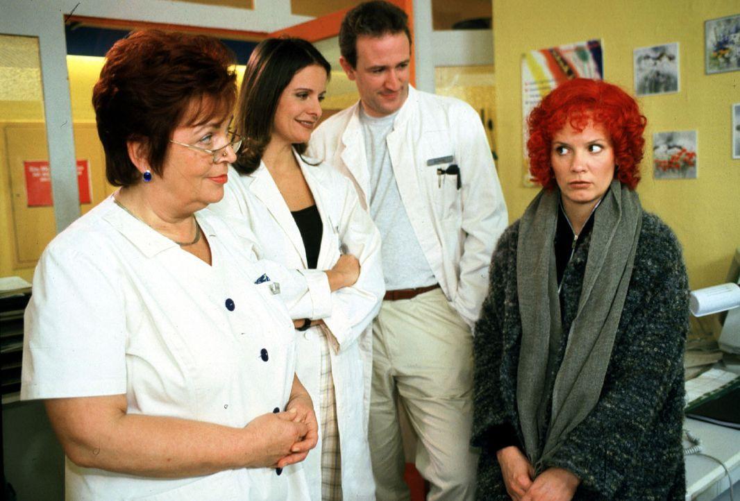 Da Stefanny (Julia Hentschel, r.) verliebt ist, wollte sie mit einer neuen Haarfarbe Dr. Forch (Stefan Walz, 2.v.r.) überraschen. An der Reaktion ih... - Bildquelle: Noreen Flynn Sat.1