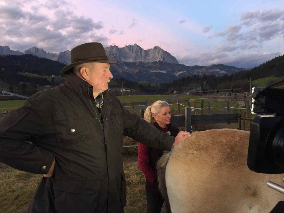 Vor ungewohnter Kulisse - auch in den Alpen werden die Dienste des Knochenbrechers dringend benötigt: Tamme Hanken ... - Bildquelle: kabel eins