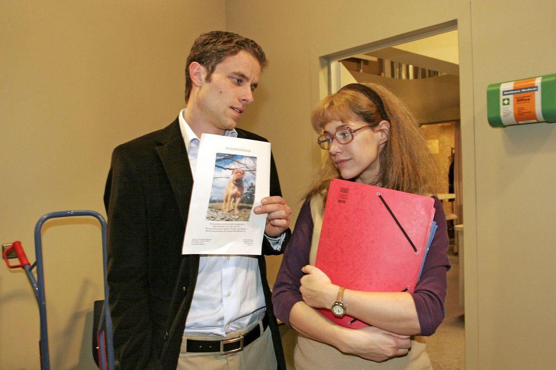 Max (Alexander Sternberg, l.) gibt vor, dass sein Engagement für ein Tierheim ihm keine Zeit lässt, um mit Lisa (Alexandra Neldel, r.) einen Kaffee... - Bildquelle: Noreen Flynn Sat.1