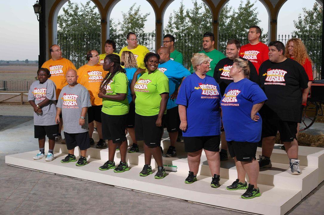 """Bei """"Biggest Loser"""" wird den Kilos der Kampf angesagt. Die 24 übergewichtigen Teilnehmer müssen ihr Durchhaltevermögen bei verschieden Wettkämpfen u... - Bildquelle: Enrique Cano SAT.1"""