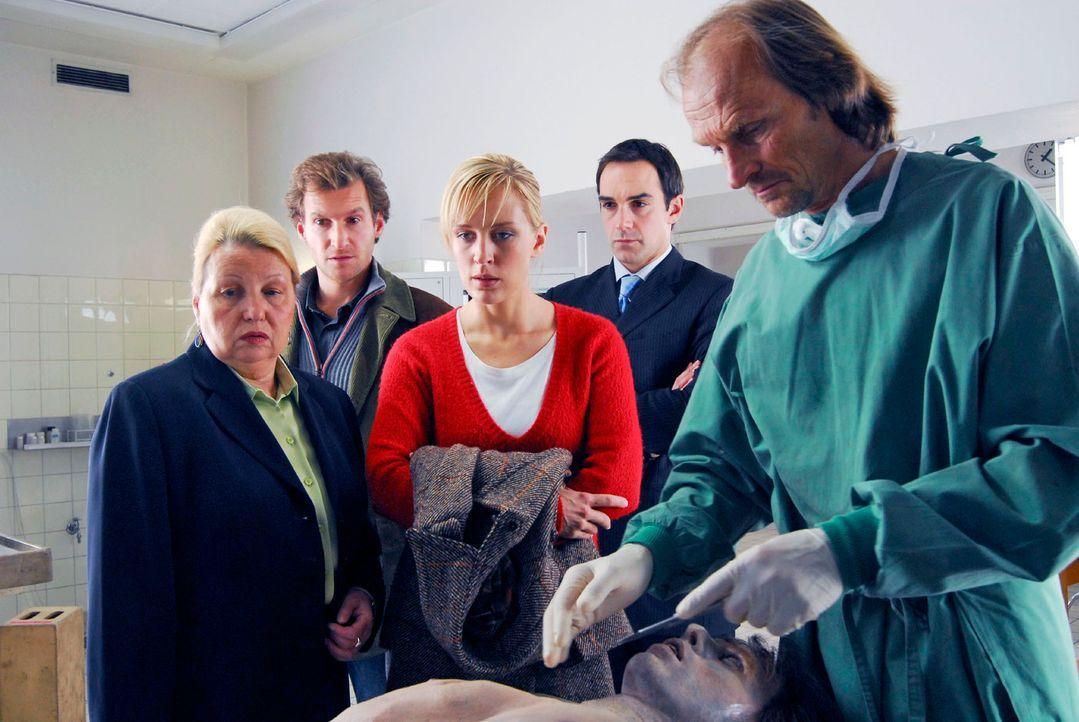 Mark (Siegfried Terpoorten, 2.v.l.) und Rebecca (Lilian Klebow, M.) stehen mit Mayerle (Harry Blank, 2.v.r.) und der Richterin Schäffer (Sarah Camp,... - Bildquelle: Hans Seidenabel Sat.1