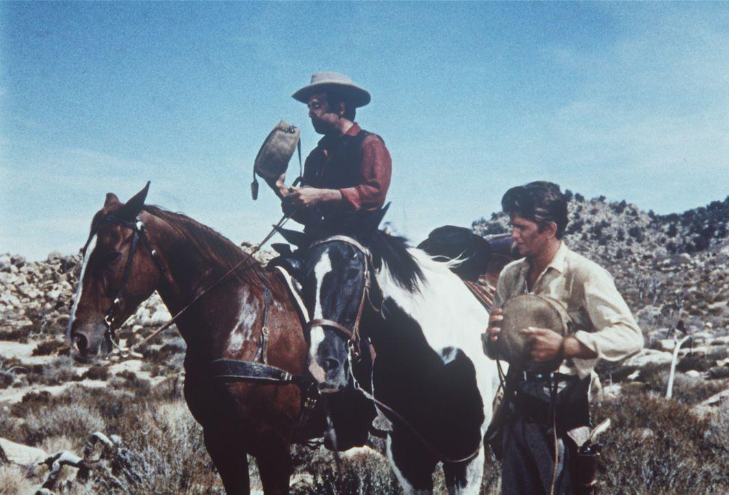 Little Joe (Michael Landon, r.) und Adam Cartwright (Pernell Roberts, l.) sind dem Mörder Marks auf der Spur .... - Bildquelle: Paramount Pictures