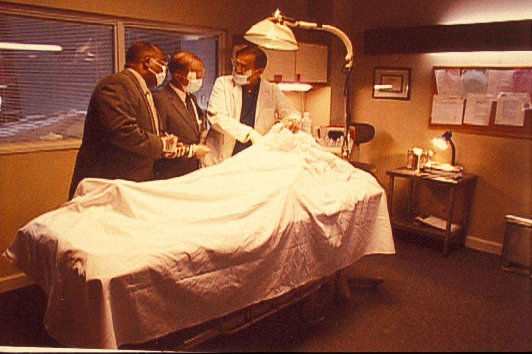 Als ab Sommer 1990 rund um Wien acht Frauenleichen gefunden werden, ist die österreichische Polizei ratlos und wendet sich an das FBI. Die Agenten f... - Bildquelle: Randy Jacobson New Dominion Pictures, LLC
