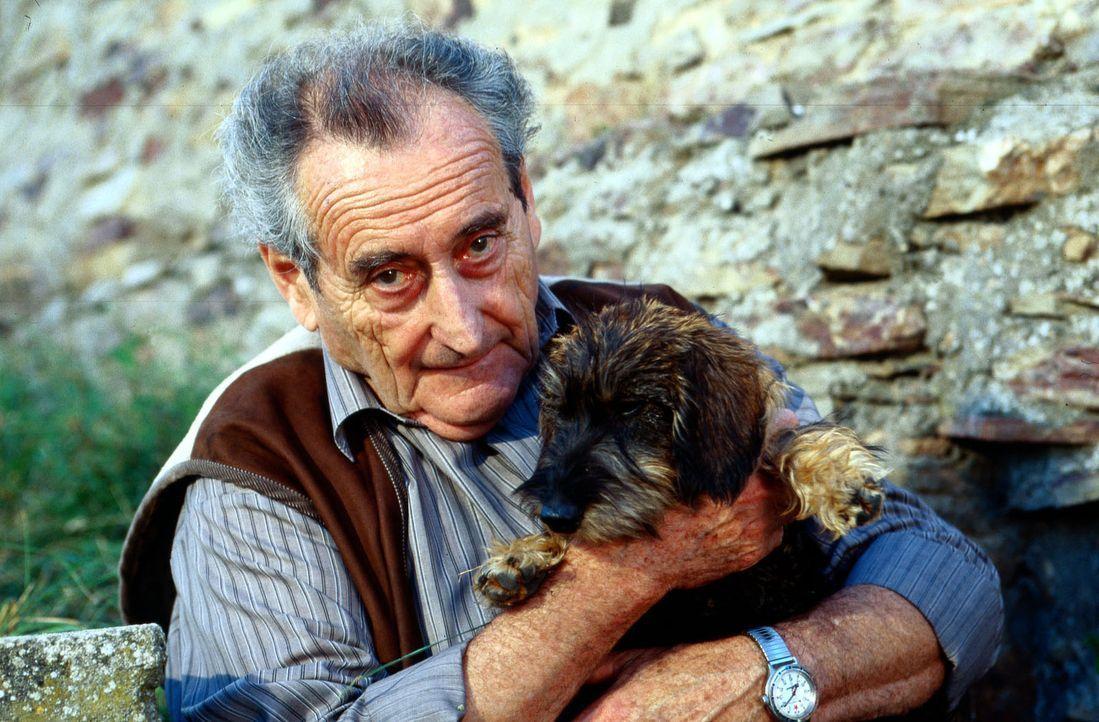 Albert Kampmann (Walter Schultheiß) ist der neue Pflegevater von Dackel Cappuccino. - Bildquelle: Krajewsky Sat.1