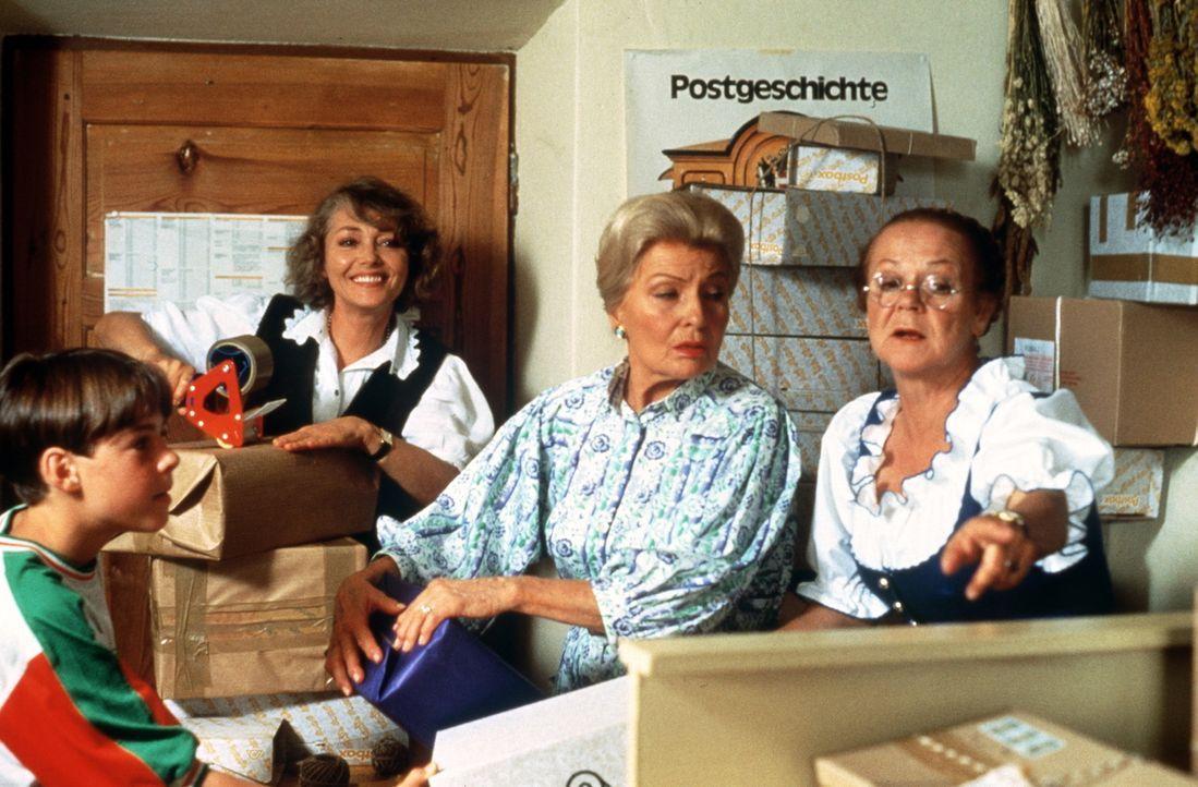 (v.l.n.r.) Maxl Burgner (Manuel Guggenberger); Elfriede Angerer (Ingeborg Schöner); Rica Althäuser (Winnie Markus); Franzi Pirchner (Enzi Fuchs) - Bildquelle: Beta Film GmbH