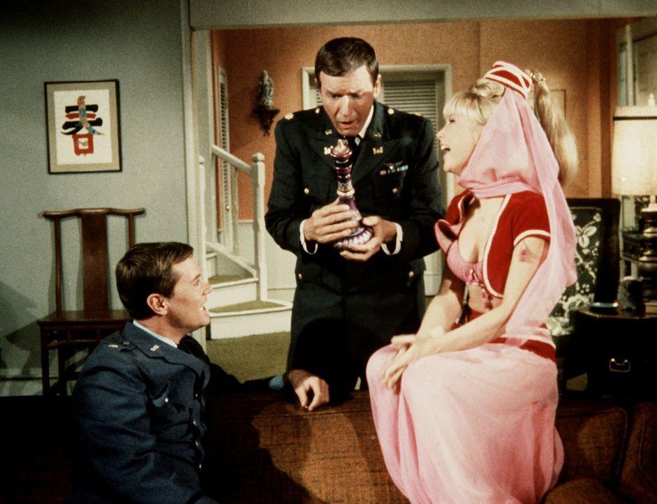 Tony (Larry Hagman, l.) und Roger (Bill Daily, M.) sind endlich wieder im Besitz von Jeannies Flasche, und Jeannie (Barbara Eden, r.) ist wieder glü... - Bildquelle: Columbia Pictures