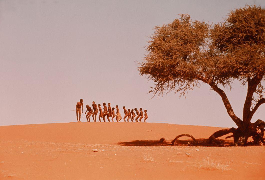 Vier Jahre lang war Regisseur Jamie Uys für diesen Film in Afrika unterwegs: In der hitzeflirrenden Namib-Wüste, in den geheimnisvollen Okovango-Süm... - Bildquelle: Warner Bros. Pictures
