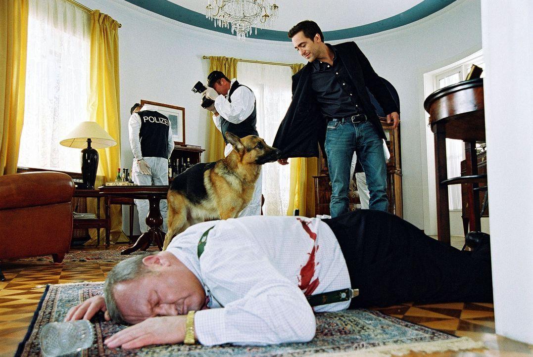 Als Marc (Alexander Pschill, r.) und Rex am Tatort eintreffen, erkennt Rex, dass der für tot erklärte Elmar Baumann (Peter Josch, liegend) noch lebt... - Bildquelle: Ali Schafler Sat.1