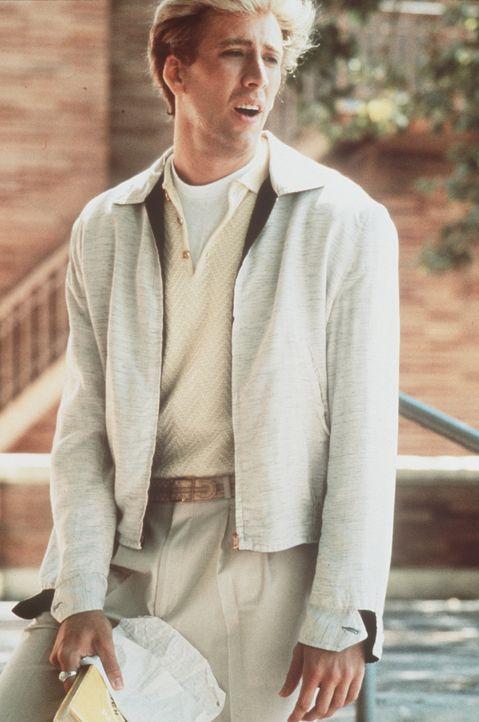 Peggy Sue will sich von ihrem Mann Charlie (Nicolas Cage) scheiden lassen. Beim Jubiläumstreffen ihres Schuljahrgangs fällt sie in Ohnmacht und find... - Bildquelle: TriStar Pictures