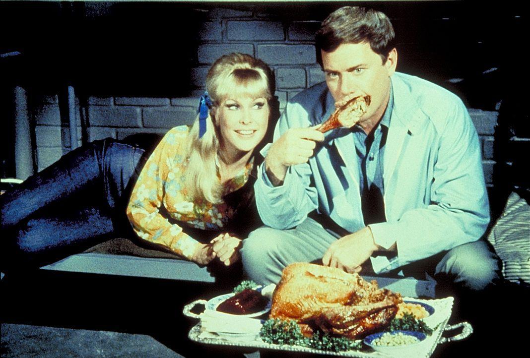 Um Tony (Larry Hagman, r.) zu trösten, zaubert Jeannie (Barbara Eden, l.) ihrem Meister einen Putenbraten her. - Bildquelle: Columbia Pictures