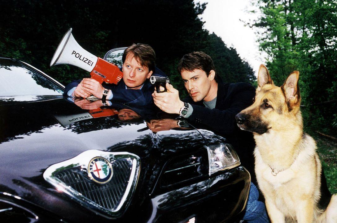 Kommissar Brandtner (Gedeon Burkhard, M.), Kommissar Böck (Heinz Weixelbraun, l.) und Rex verfolgen Horst Bacher, der seine Kinder entführt hat ... - Bildquelle: Ali Schafler Sat.1