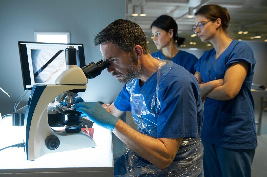 Dr. Fred Abel (Tim Bergmann) - Bildquelle: Britta Krehl SAT.1 / Britta Krehl