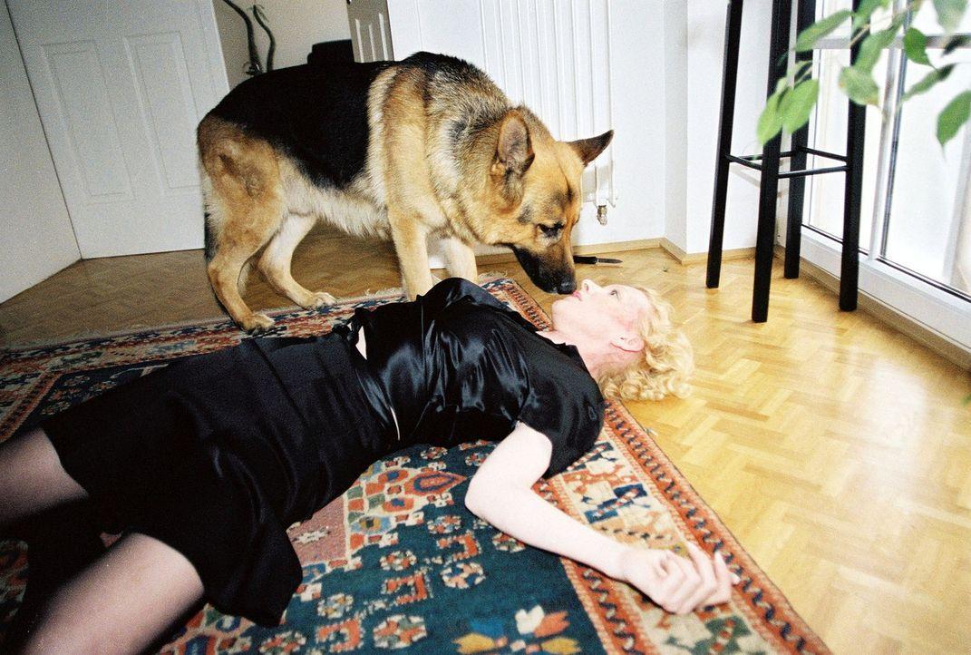 Rex findet Beatrix (Sunnyi Melles), die niedergeschlagen wurde ... - Bildquelle: Ali Schafler Sat.1