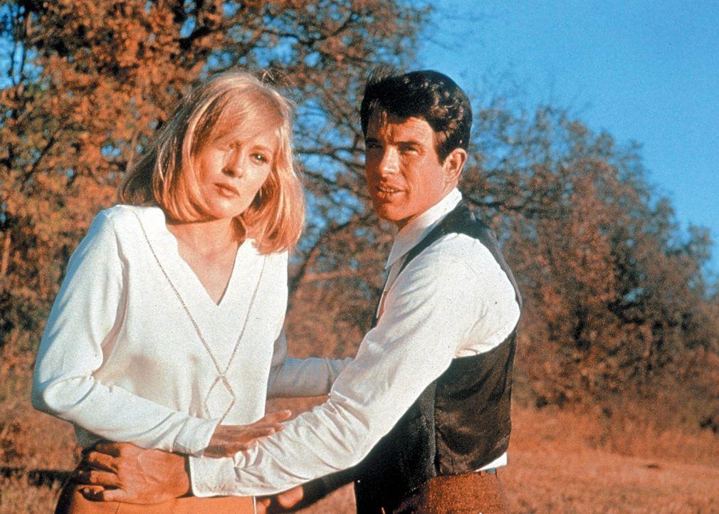 Das Gangsterpärchen Bonnie (Faye Dunaway, l.) und Clyde (Warren Beatty, r.) will sich endlich den Traum von Freiheit und Reichtum erfüllen, wofür si... - Bildquelle: Warner Bros.