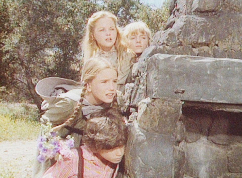 (v.l.n.r.) Vorsichtig nähern sich Willie (Jonathan Gilbert), Laura (Melissa Gilbert), Mary (Melissa Sue Anderson) und Nellie (Alison Arngrim) der Ru... - Bildquelle: Worldvision
