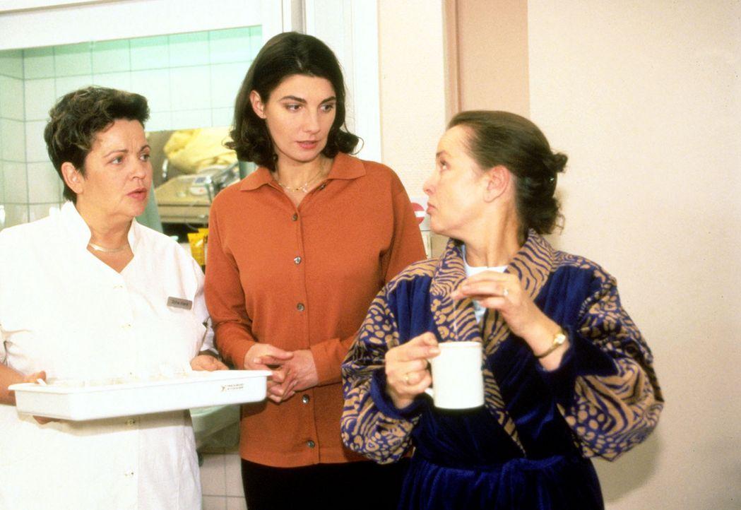 Klara (Walfriede Schmitt, l.) macht die neue Patientin Verena Bisalki (Karin Kienzer, M.) mit ihrer Bettnachbarin Hanni Rüsch (Petra Kelling, r.) b... - Bildquelle: Noreen Flynn Sat.1