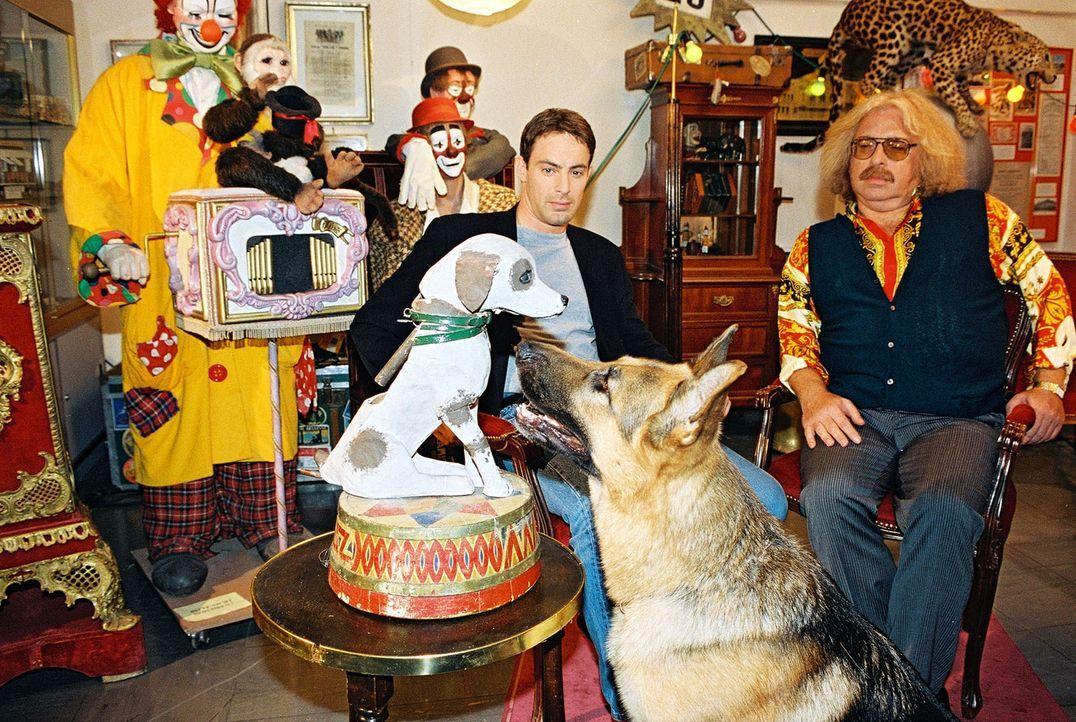 Rex und Kommissar Brandtner (Gedeon Burkhard, l.) ermitteln bei einem Zirkus-Freak (Bernhard Paul, r.). Rex interessiert sich für die Hunde-Büste... - Bildquelle: Ali Schafler Sat.1