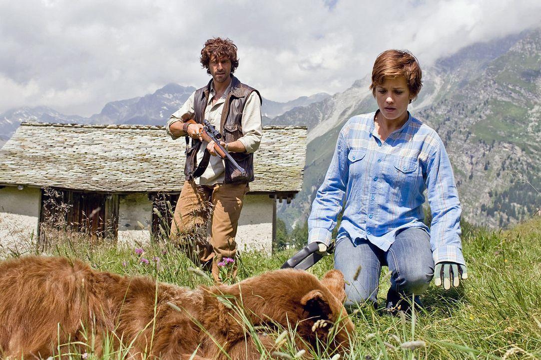 Paula (Muriel Baumeister, r.) hat einen perfekten Schuss abgegeben. Innerhalb von wenigen Momenten wirkt das Betäubungsmittel beim Bären und sie kan... - Bildquelle: Lukas Unseld Sat.1