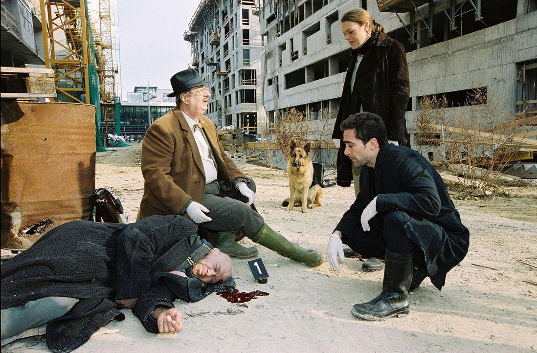 Dr. Leo Graf (Gerhard Zemann, 2.v.l.) untersucht die Leiche, die auf einer Baustelle gefunden wurde. Mit Marc (Alexander Pschill, r.) und Niki (Elke... - Bildquelle: Ali Schafler Sat.1