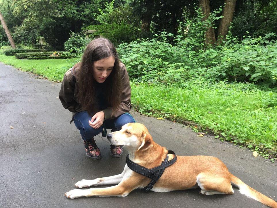 Narkoleptikerin Pauline wünscht sich einem Hund, der sie im Alltag wachhält und ihr Schutz bietet, sollte sie in den plötzlichen Tiefschlaf fallen.... - Bildquelle: SAT.1