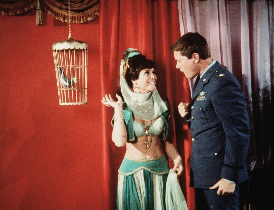 Jeannies Schwester (Barbara Eden, l.) will Tony (Larry Hagman, r.) in einen Vogelkäfig sperren. - Bildquelle: Columbia Pictures