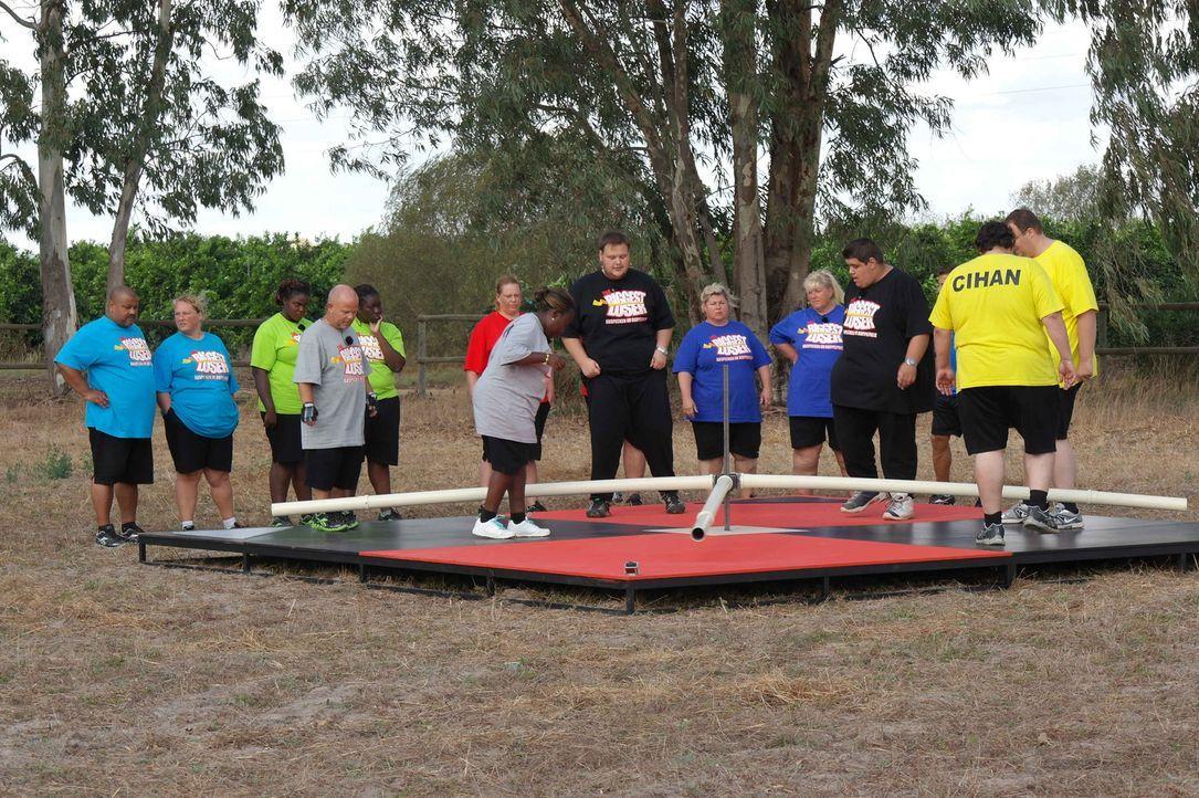 Zwischen den Kandidaten entbrennt ein Wettkampf um das Gewicht. Die Gewinner der Wettkämpfe dürfen sich über Bonuskilo freuen, während die Verlierer... - Bildquelle: SAT.1