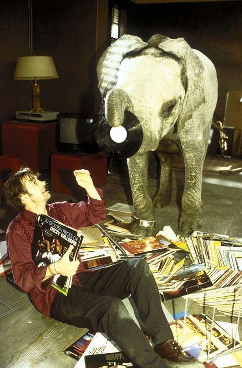 Als eines Tages ein kleines Elefant in sein Leben einbricht, beginnt für Lennard (Peter Lohmeyer) eine aufreibende Zeit ... - Bildquelle: Leslie Haslam ProSieben