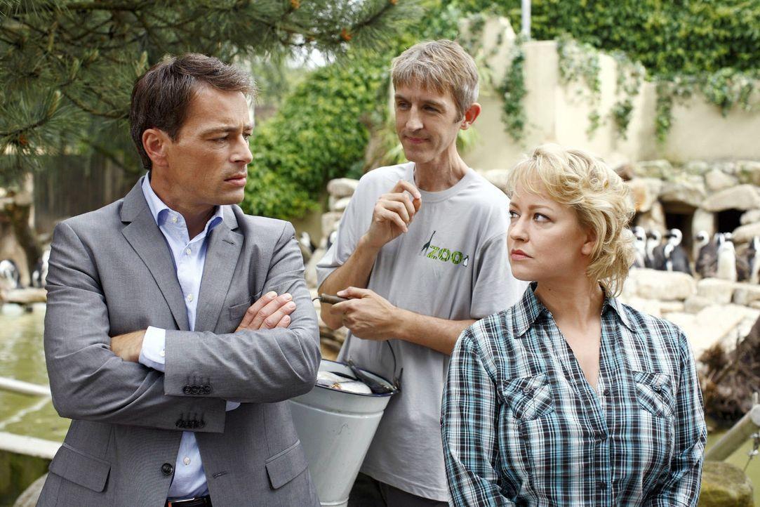 Sonja (Floriane Daniel, r.) glaubt, dass Mark (Jan Sosniok, l.) ihr Vertrauen missbraucht hat und hinter den Sabotageakten steckt. Hugo (Andreas Sch... - Bildquelle: Guido Engels Sat.1