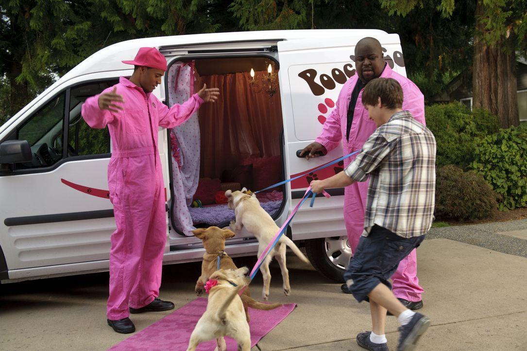 Bodi Grogan (Travis Turner, r.) beschließt kurzerhand, Marley bei einem Hundewettbewerb teilnehmen zu lassen. Tom (Jarod Joseph, l.) versucht mit ei... - Bildquelle: 2011 Twentieth Century Fox Film Corporation. All rights reserved.