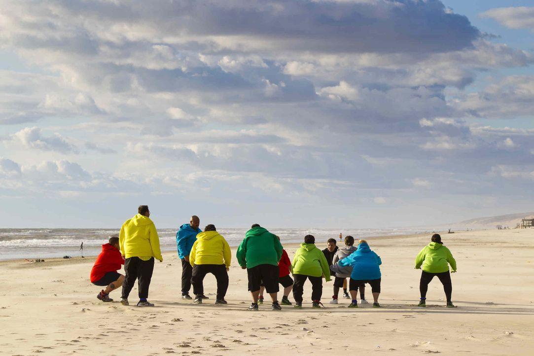 """Bei """"The Biggest Loser"""" wird den Kilos der Kampf angesagt. Die 24 übergewichtigen Teilnehmer müssen ihr Durchhaltevermögen bei verschieden Wettkämpf... - Bildquelle: Enrique Cano SAT.1"""
