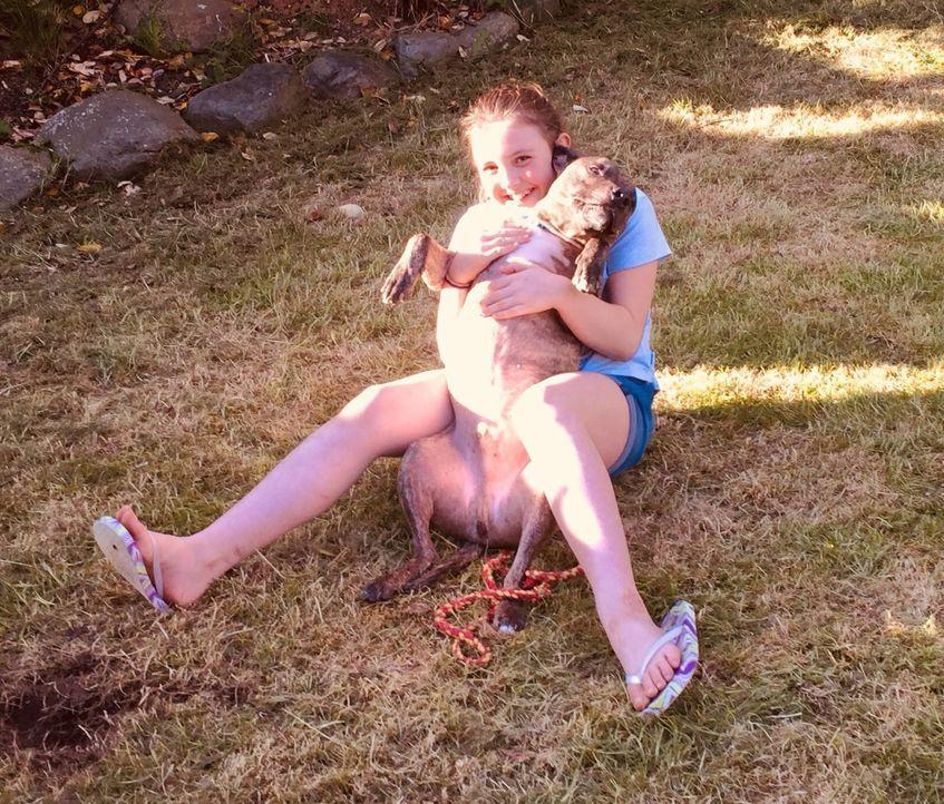 Mensch und Hund in Not - Bildquelle: Lee Willetts